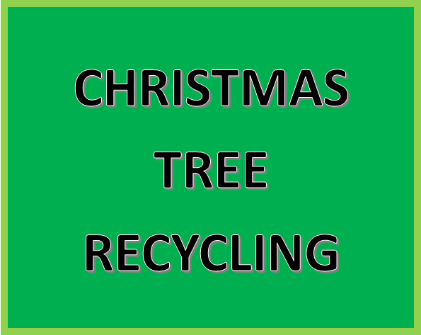 Click Here for More Information on Christmas Tree Recycling
